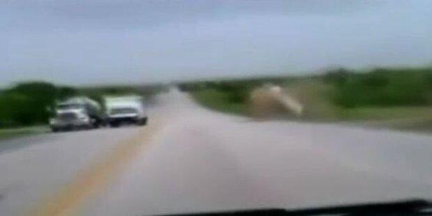 Auto überschlägt sich nach Sekundenschlaf