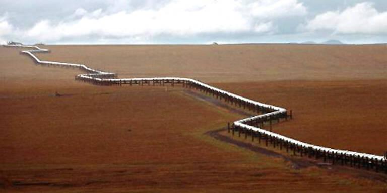 Schlechtes Omen: Die Trans-Alaska-Pipeline musste nach dem Austritt von mehr als 1.500 Litern Öl abgeschaltet werden. (c)AP