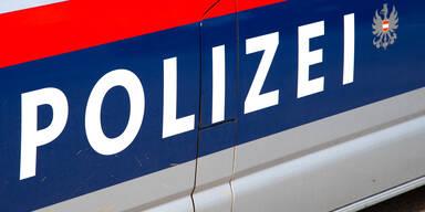Drei Wiener Taxifahrer wegen Schlepperei festgenommen