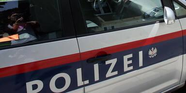 Zwei Baumaschinen-Diebe festgenommen