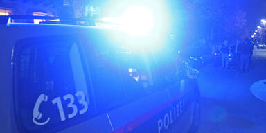 Polizei Polizeiauto Streifenwagen Blaulicht