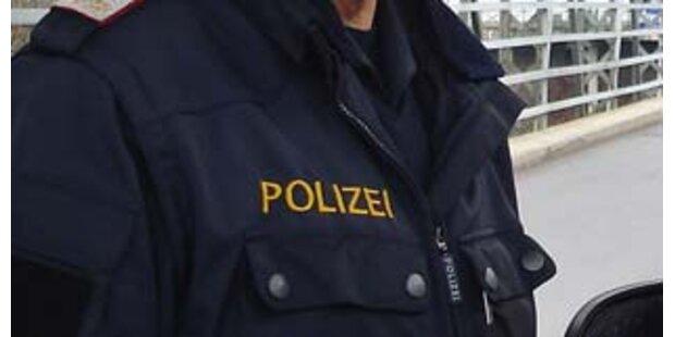 Alkoholisierte schlugen Polizisten krankenhausreif