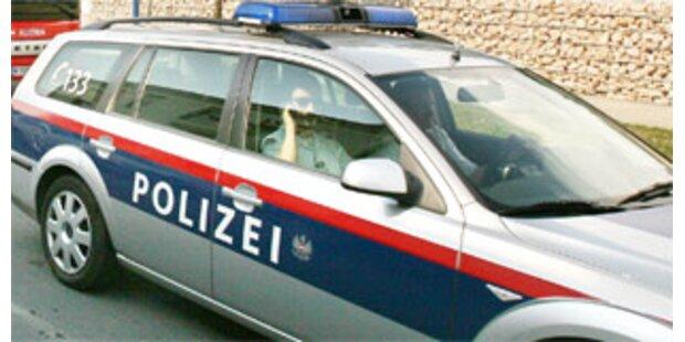 Steirische Polizei erwischte eifriges Diebestrio