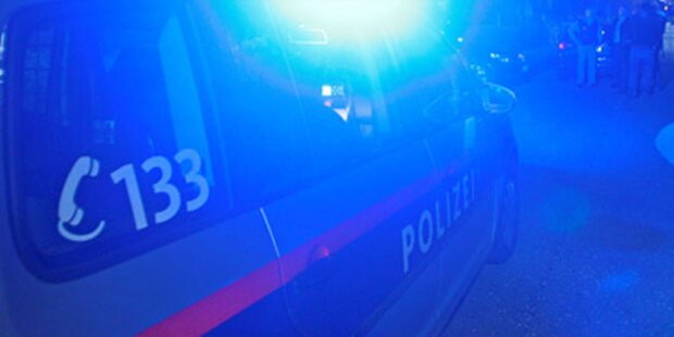 Wiener Alko-Lenker beschädigte 12 Autos