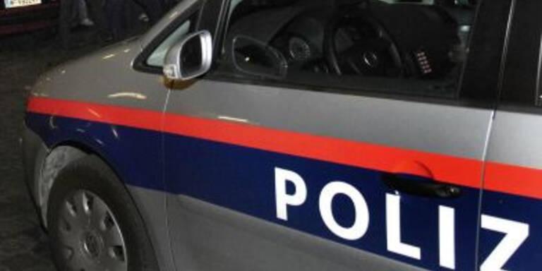 Sieben Dealer im Burgenland und in NÖ geschnappt
