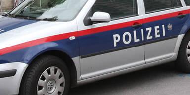 polizei_fally