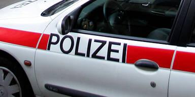 polizeiauto_APA