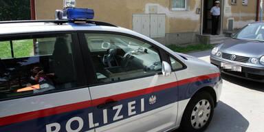 polizeiauto_apa_roland_schlager