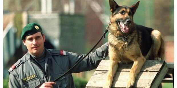 Polizeihunde fassten Serieneinbrecher
