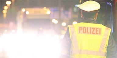 Schlepper mit vier Illegalen festgenommen