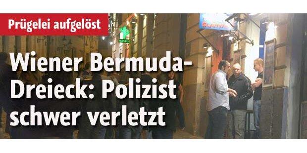 Polizist von Raufbold schwer verletzt