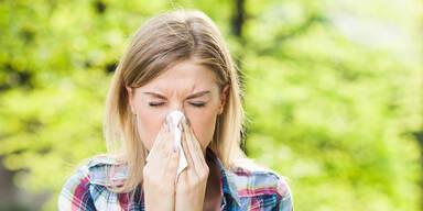 Jetzt herrscht zweithöchste Allergie-Warnung