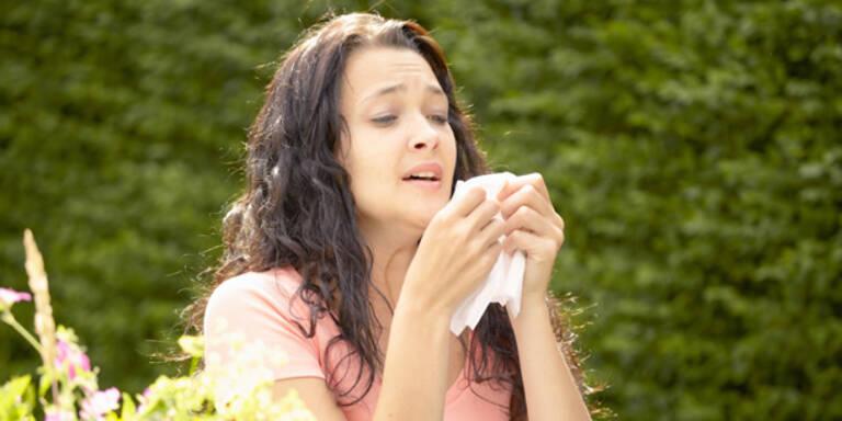 Die Pollensaison 2015 hat begonnen