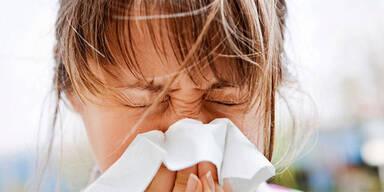 Pollensaison: Was jetzt blüht