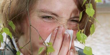 Allergiker zu Saison-Beginn empfindlicher