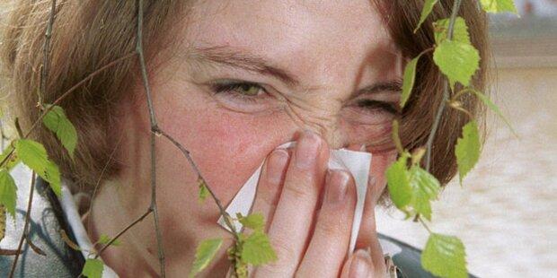 Schonfrist für Allergiker bald vorbei?