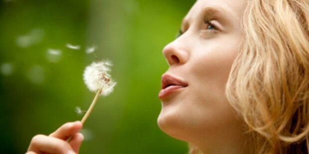 Regenwetter dämpft Pollenflug