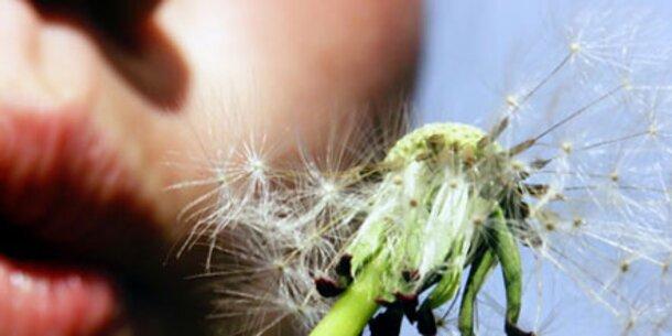 Wie Sie sich gegen Pollen wappnen