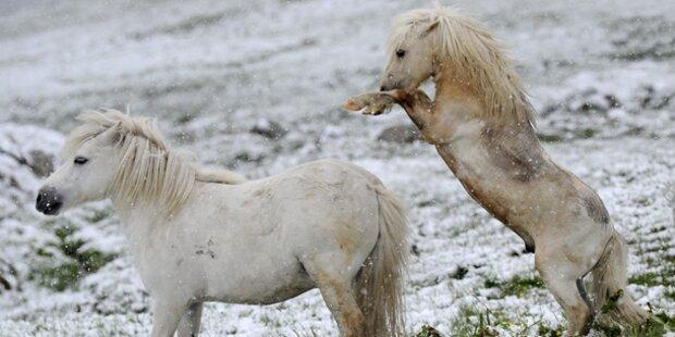 Kaltfront Roland bringt Schnee