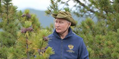 Putin wird 67 und geht in Sibirien Pilze sammeln