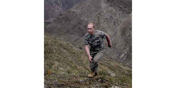 Putin wird zum Pferdeflüsterer