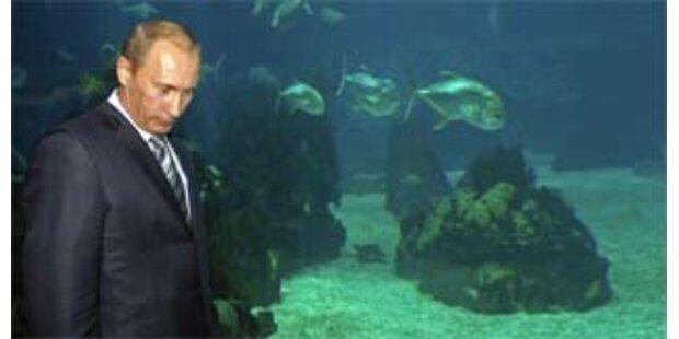 Putin vergleicht US-Raketenschild mit Kuba-Krise