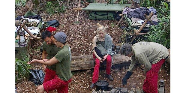 Tag 4 im australischen Dschungel voller Überraschungen