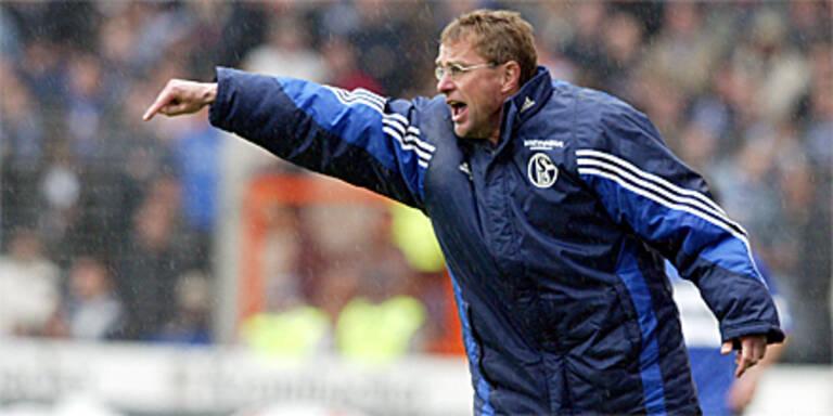 Rangnick neuer Schalke-Trainer