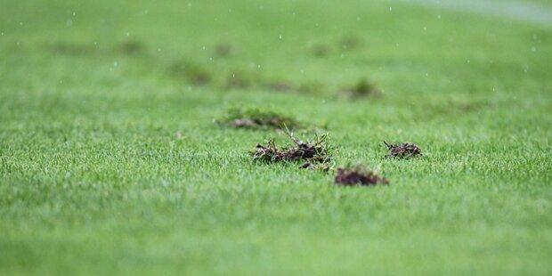Rasen-Ranking: Sturm Graz hat das beste Gras