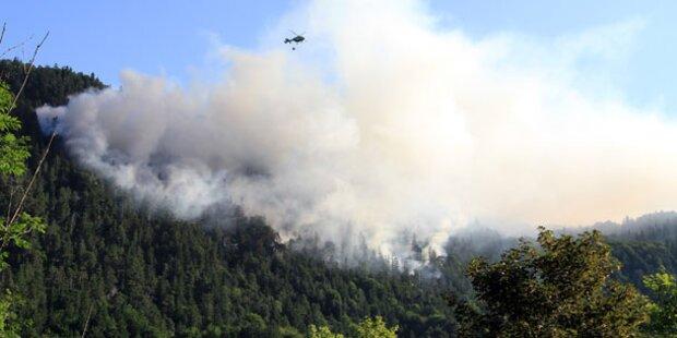 Afrika-Hitze sorgt für Waldbrände