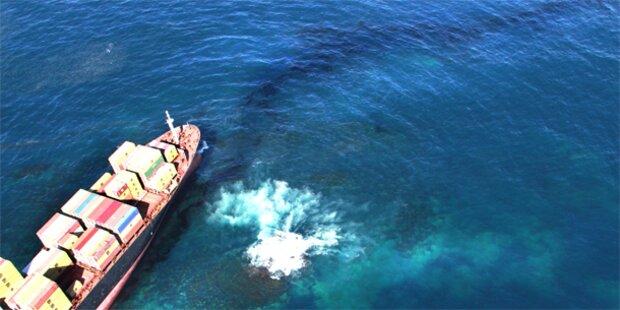 Neuer Ölfleck vor Neuseeland entdeckt