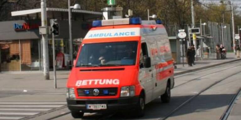 Alko-Lenker in NÖ überschlug sich mit PKW