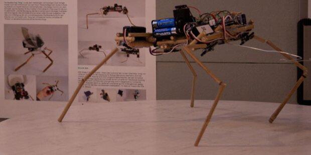 RobotChallenge 2012 lässt Roboter fliegen