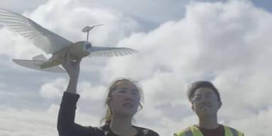 Roboter mit echten Taubenfedern fliegt