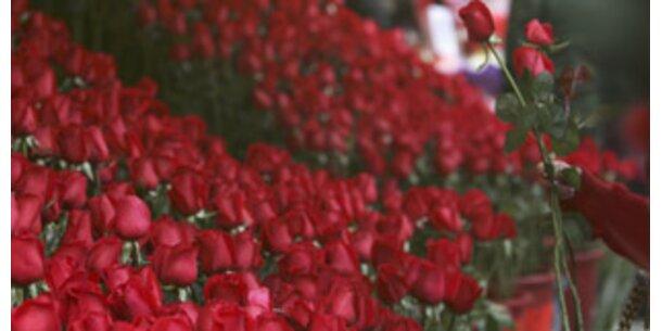 Blumenhandel setzt am Valentinstag das 10-fache um