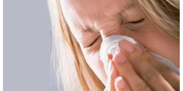 Ganz Österreich leidet unter der Grippewelle