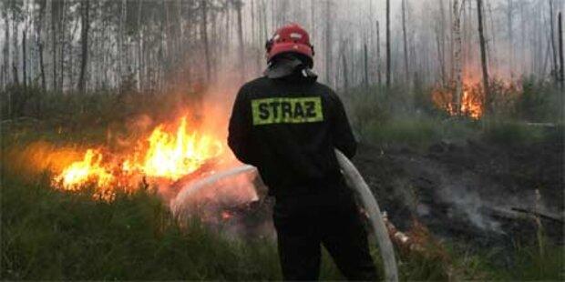 Wieder Waldbrände in Russland
