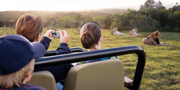 Südafrika: Im Reich von Löwe und Gazelle