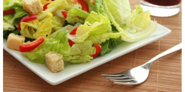Die besten Sommersalate