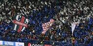 Fan-Rekord für Bullen gegen Frankfurt