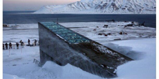 In Spitzbergen steht die weltgrößte Saatgutbank