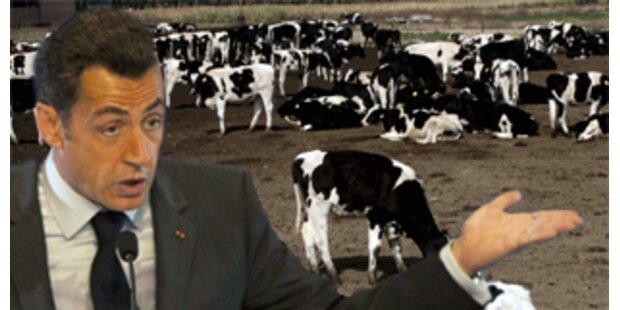 Sarkozy produziert Schmutz wie 823 Milchkühe