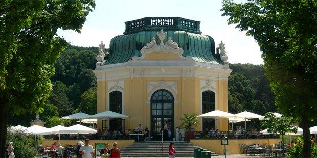 Schönbrunn trauert: Nächster Publikumsliebling tot