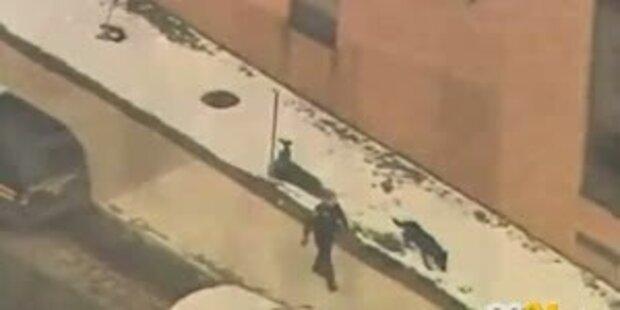 Schießerei auf US-Highschool: 2 Tote