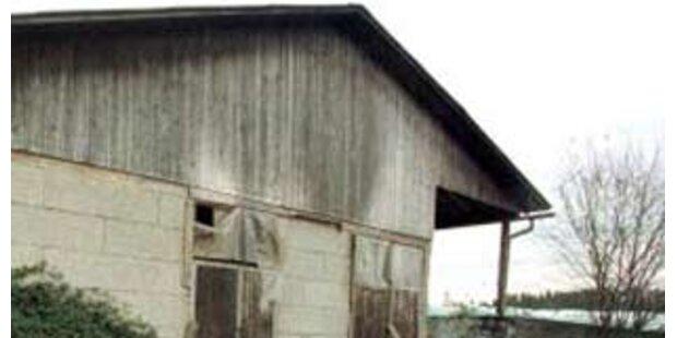 18-jähriger Steier lag tot in Scheune