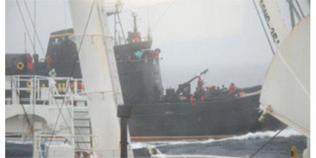 Tierschützer bewarfen Walfänger mit Buttersäure