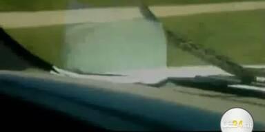 Schreck: Schlange als giftige Beifahrerin