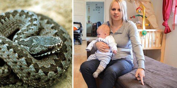 Mutter rettet Babys vor Schlange