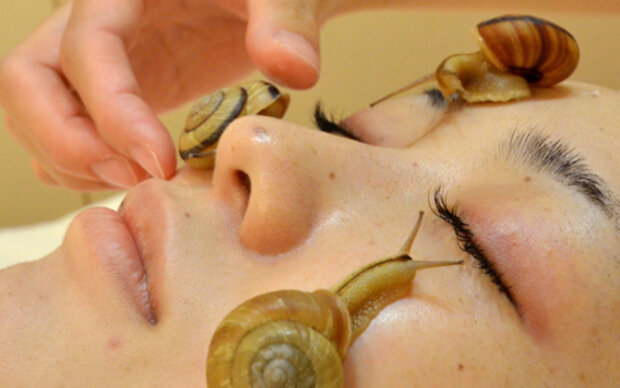 Schnecken-Behandlung ist neuer Beauty-Trend
