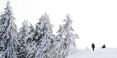 Sibirien-Kälte legt Europa lahm